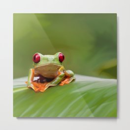Posion Dart Frog Painting Metal Print
