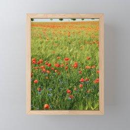 Field of Poppies Framed Mini Art Print