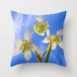 Spring under snowdrops Throw Pillow