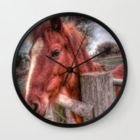 pony Wall Clocks featuring Pony  by Darren Wilkes Fine Art Images
