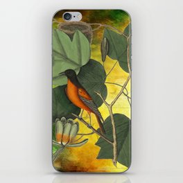 Baltimore Oriole on Tulip Tree, Vintage Natural History and Botanical iPhone Skin