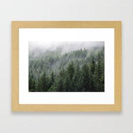 Fog Forest Framed Art Print