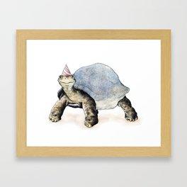 Tortoise Illustrational  Framed Art Print