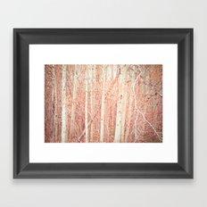 White Birch Trees Framed Art Print