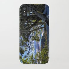 Fall in the Rockies Slim Case iPhone X