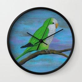 Cuddly quaker parrot Wall Clock