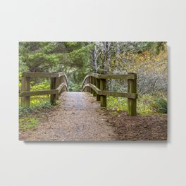 Fogarty Creek State Recreational Area, Bridge, Forest, Green, Autumn, Metal Print