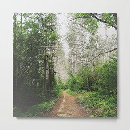 onward trails Metal Print