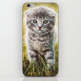 Small duckling playing with a little cat on green grass outdoors  iPhone Skin