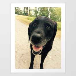 Smiling Black Lab Dog Art Print