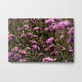 Crouching Tiger, Hidden Pollinator Metal Print