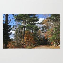 Halifax Walk Rug