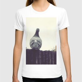 der taub sehnsucht T-shirt