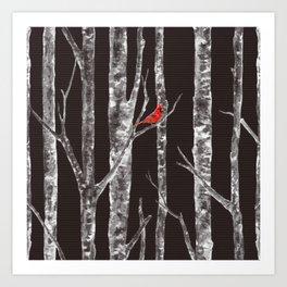 Lone Cardinal Art Print