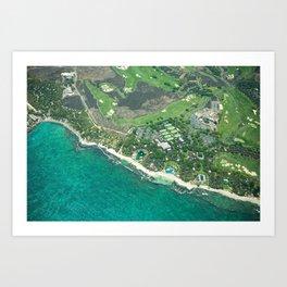 Hawaii Coast Art Print