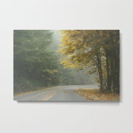 Foggy autumn road Metal Print
