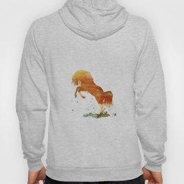 HORSES -Wild mountain pony Hoody