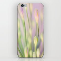 Lavender Nile iPhone & iPod Skin