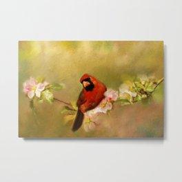 Cardinal of Spring Metal Print