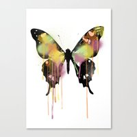 butterfly Canvas Prints featuring Butterfly by PandaGunda