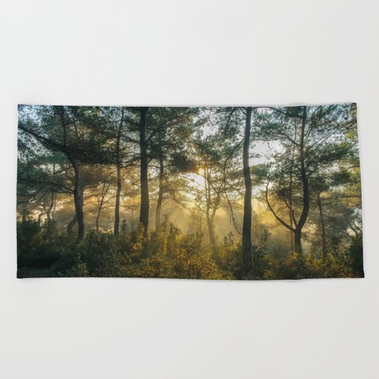 Great Awakening Beach Towel
