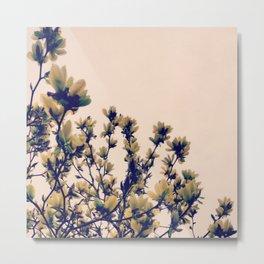 Pale spring Metal Print