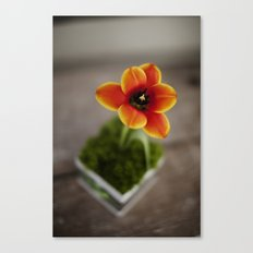 FLOWER ON FIRE Canvas Print