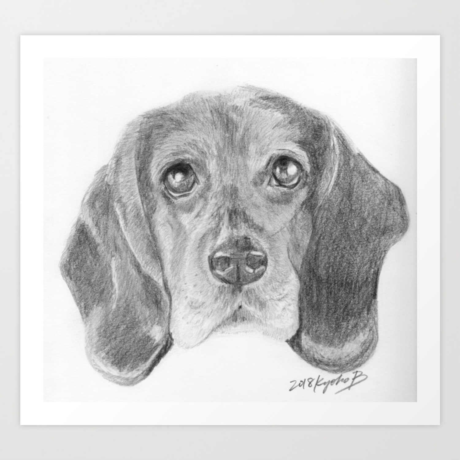 Beagle dog face realistic pencil sketch drawing art print