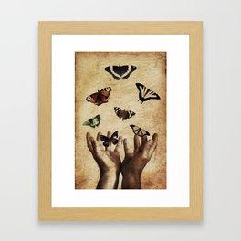 Butterflies Free Framed Art Print