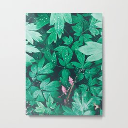 Summer garden in the morning Metal Print