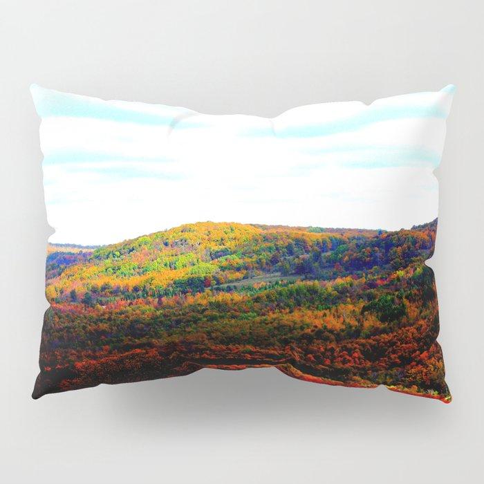 Beaver Valley Art Decor. Pillow Sham