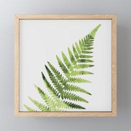 Farn Framed Mini Art Print