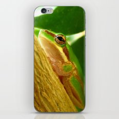 friend. iPhone & iPod Skin