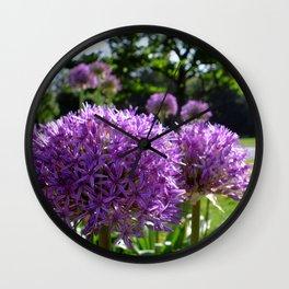 Purple Allium Giganteum Wall Clock