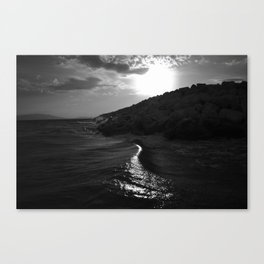 Shimmer Canvas Print