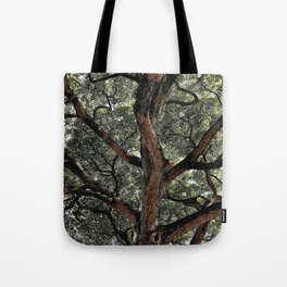 Albuzi Tree Tote Bag