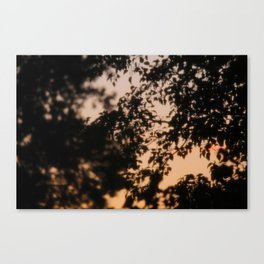Late Night View (3/3) Canvas Print