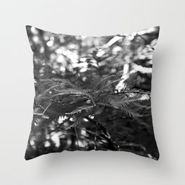Shadowed Stories Throw Pillow