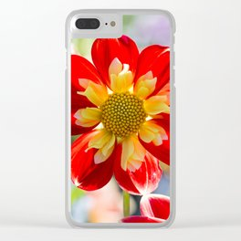 Dahlia In The Garden / 33 Clear iPhone Case