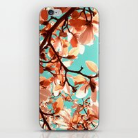 magnolia iPhone & iPod Skins featuring magnolia by blackpool