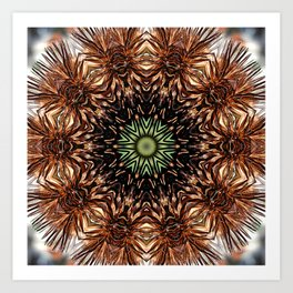 Nature mandala - Autumn coneflower seedhead Art Print