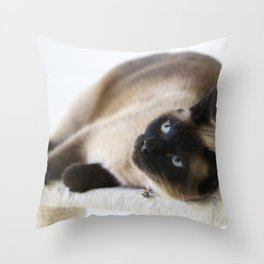 Sulley, A Siamese Cat Throw Pillow