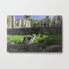 cats in the ruins Metal Print