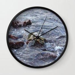 turtlebutt Wall Clock
