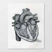 anatomical heart Canvas Prints featuring Anatomical Heart by Maria G. Vieyra Ortiz
