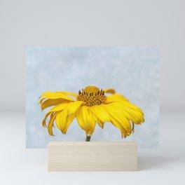 Rain Drops on Daisy Mini Art Print