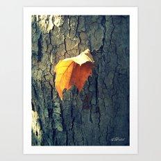 A Lonely Leaf Art Print