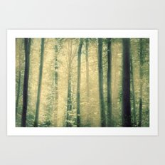 into the woods 16 Art Print