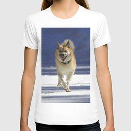 IcelandicSheepdog20150402 T-shirt