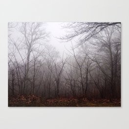 Great Smokey Mountains 4 Canvas Print